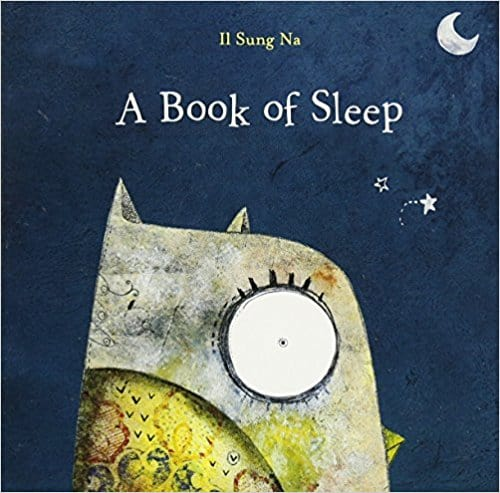 A Book of Sleep | Best Bedtime Books | High Low Baby