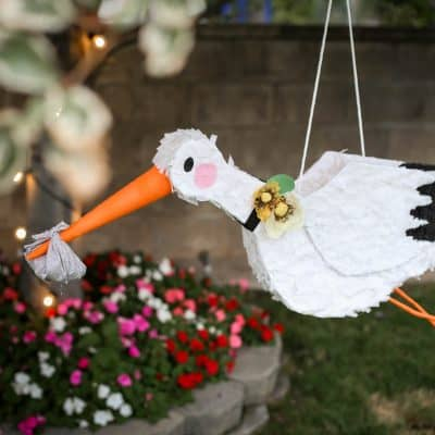 A Stork Themed Gender Reveal Party That Will Make You Smile